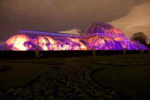Interior illumination of the Palm House at Kew