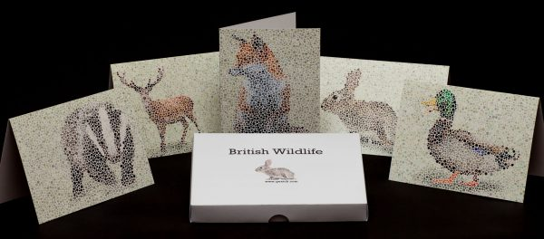 5 British wildlife greetings cards with box and envelopes