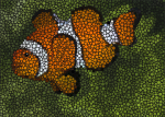 clown fish drawn with dots